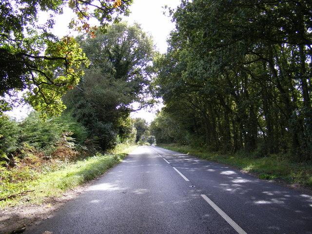 B1149 Holt Road, Buxton Heath