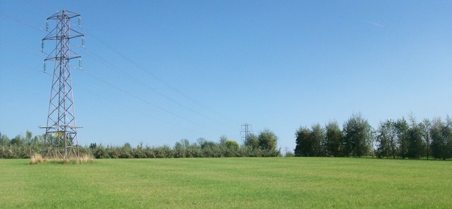 Pylons across the orchard