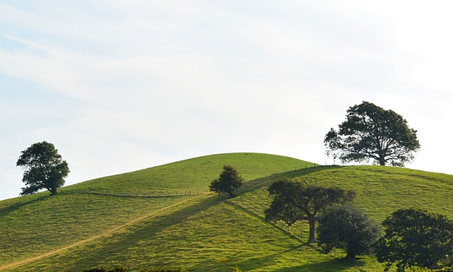Way's Hill and Round Knoll, West Milton, Dorset