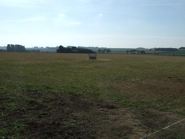 Farmland, Sands Farm