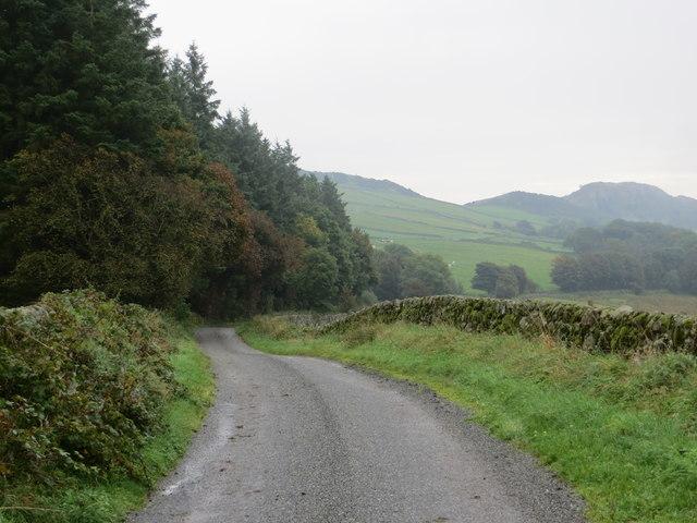 Lane looking south-east towards Long Wood