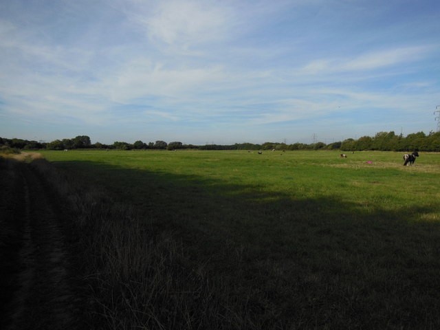 A field off Beverley  Road, East Yorkshire