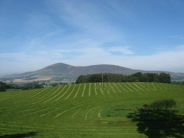 The fields of Loanhead Farm in South Lanarkshire