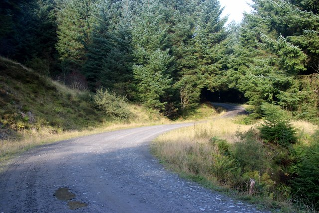 Forest road takes a bend to cross a burn above Bullwood