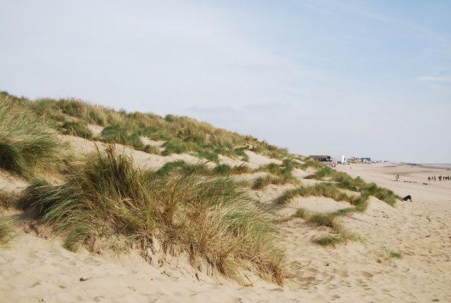 Marram Grass, Camber Sands