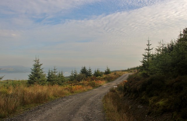 Forest road high above the Firth of Clyde