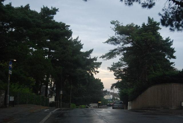Panorama Rd