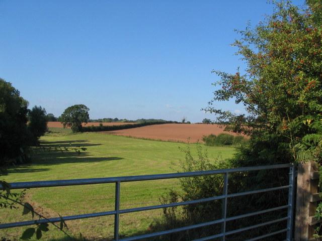 Farmland by the A429