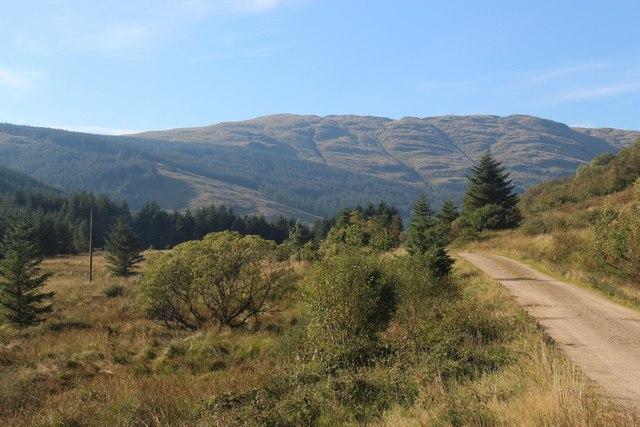 Mixed habitat on the valley floor in Glen Massan