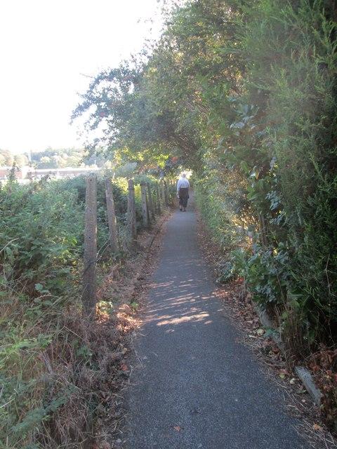 Footpath - The Avenue
