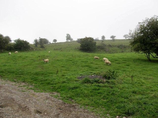 Cliff Road Farmland