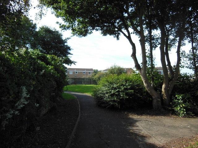 A green off Downfield Avenue