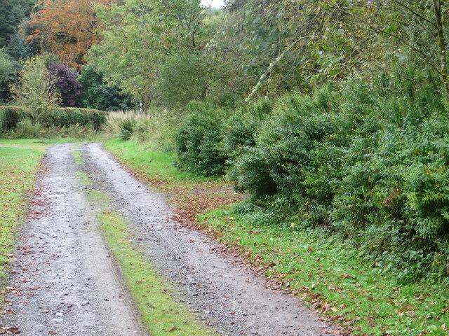 Track at Corriedoo towards Dagliesh