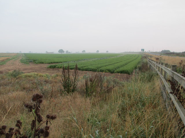 Farmland near the A1