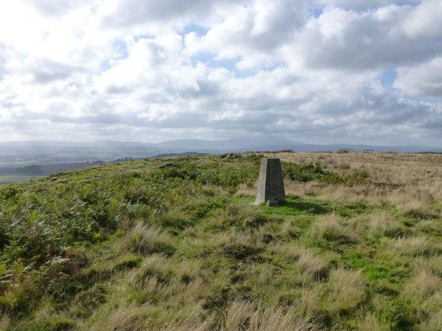 Trig point on Eglingham Moor looking west