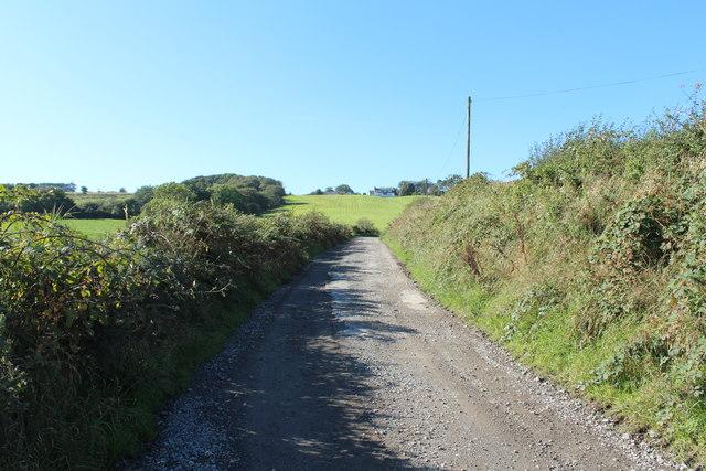 Road to Springbank Farm