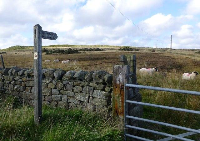 Public bridleway to Quarry House