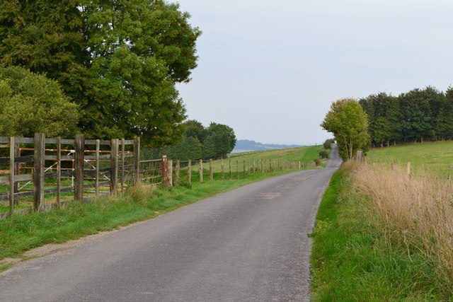 Lane near Kent's Wood