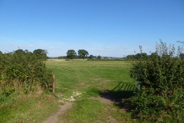 Farmland off Marketbridge Lane