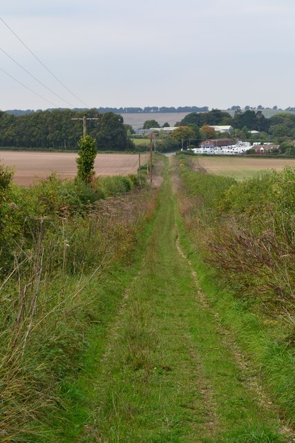 Grassy track towards Hollom Down Farm