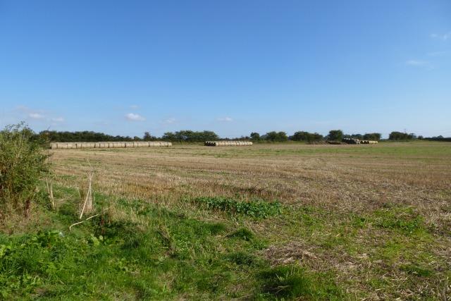 Bielby Field