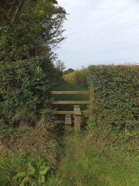 Stile on East Devon Way