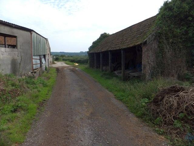 Barns at Lower Cownhayne