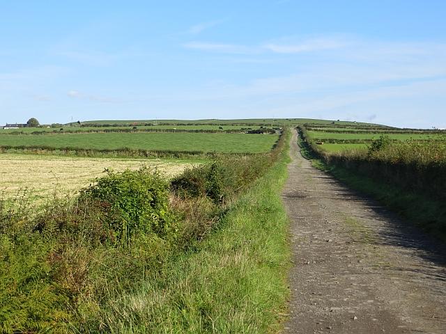 Road to Auchintirrie