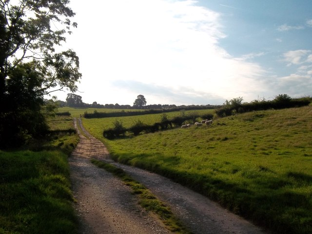 Track and Bridleway  to Riddings