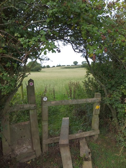 Stile on the East Devon Way