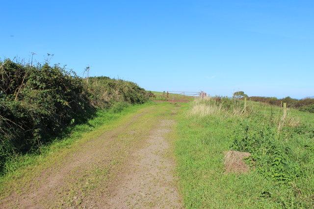 Farm Track at Springbank