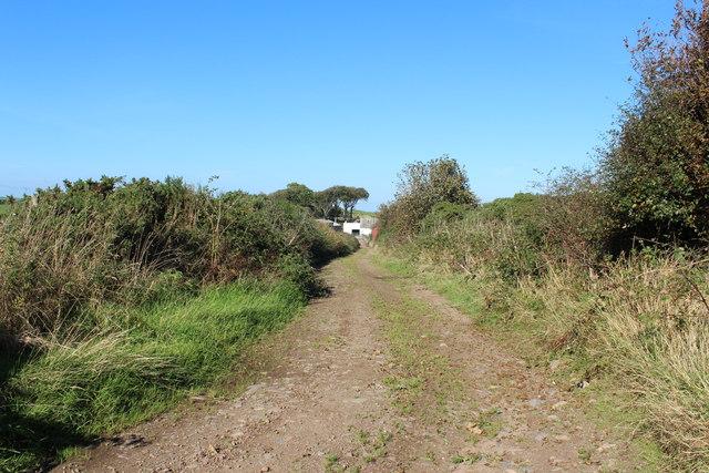 Track to Springbank Farm
