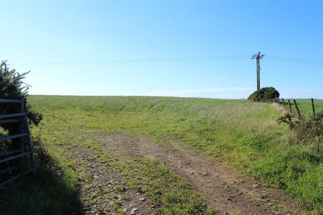 Farmland at Springbank
