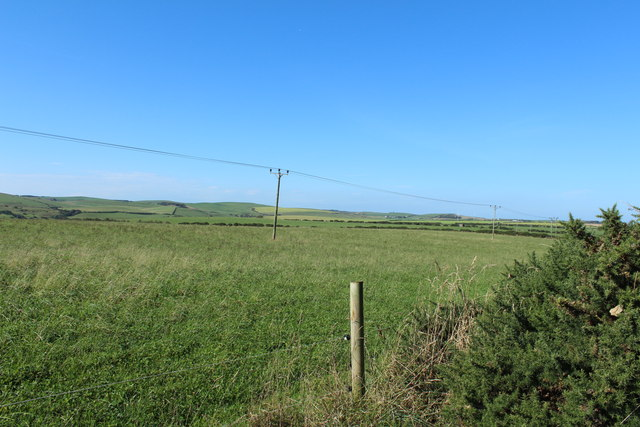 Farmland near Springbank