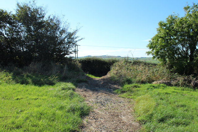 Path to the Public Footpath on Gallow Hill
