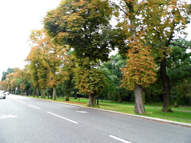 Tooting Bec Common on Garrad's Road