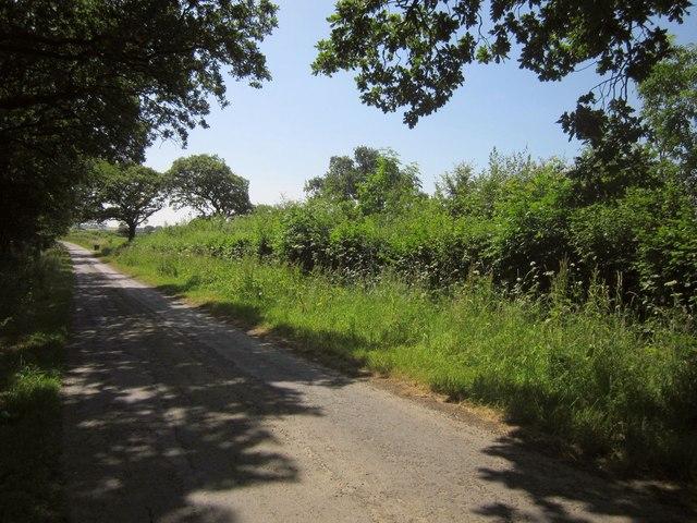 Lane near Thornham