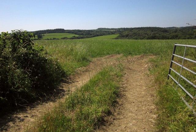 Field near Thornham