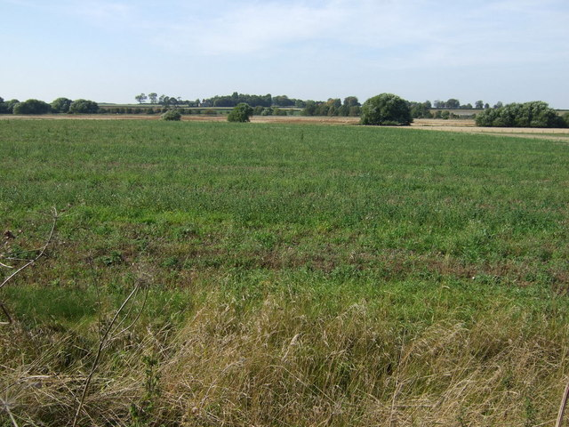 Farmland north east of Dalderby