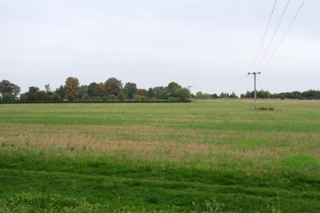 Power lines over the field