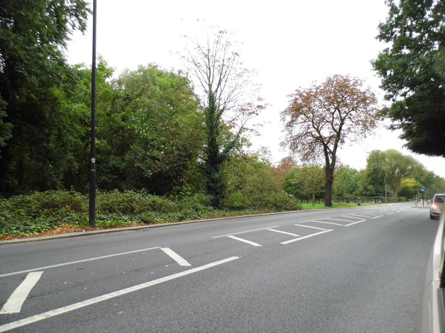 Streatham Common North