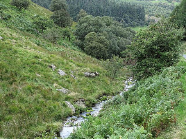 Stream at Bwlch y Hwch