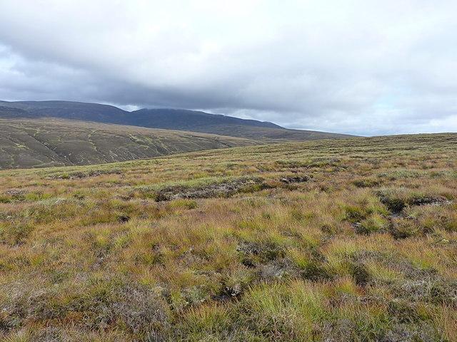 Across upper Glen Feshie