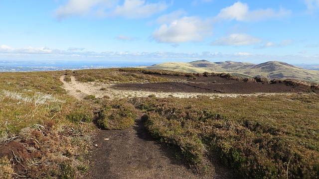 Exposed peat on Black Hill