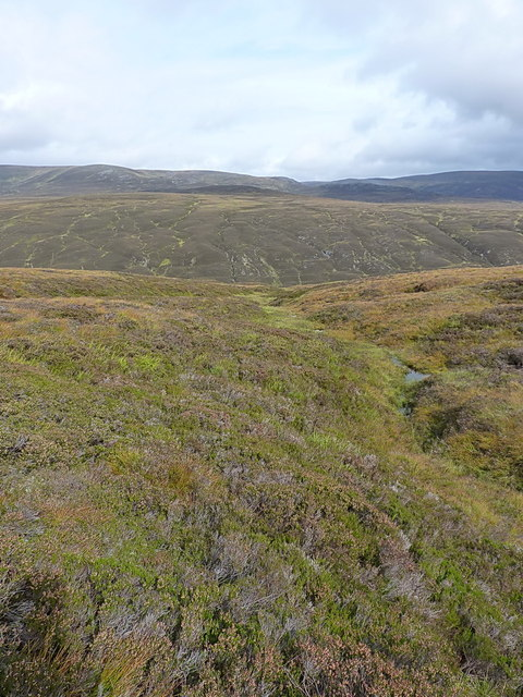 The upper part of a gully draining into Glen Feshie