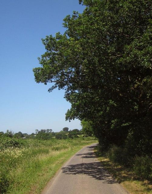 Lane near Town Moor Cross