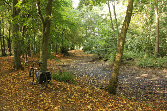 Hartsholme Park