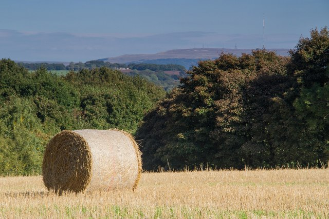 Big bale, Roby Mill