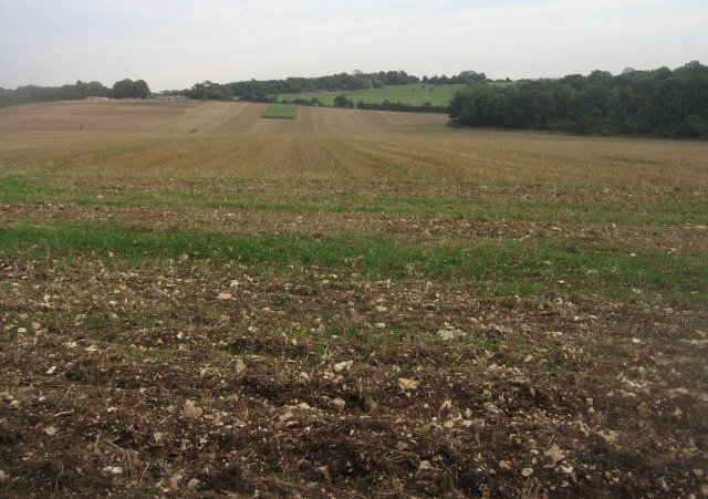 Fields east of Halves Wood