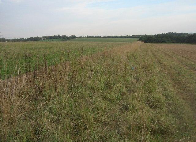 Boundary between fields